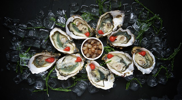 oysters 1209767 640